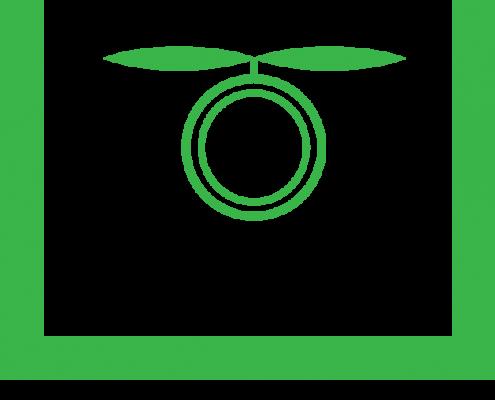 Lensmen Drone Logo