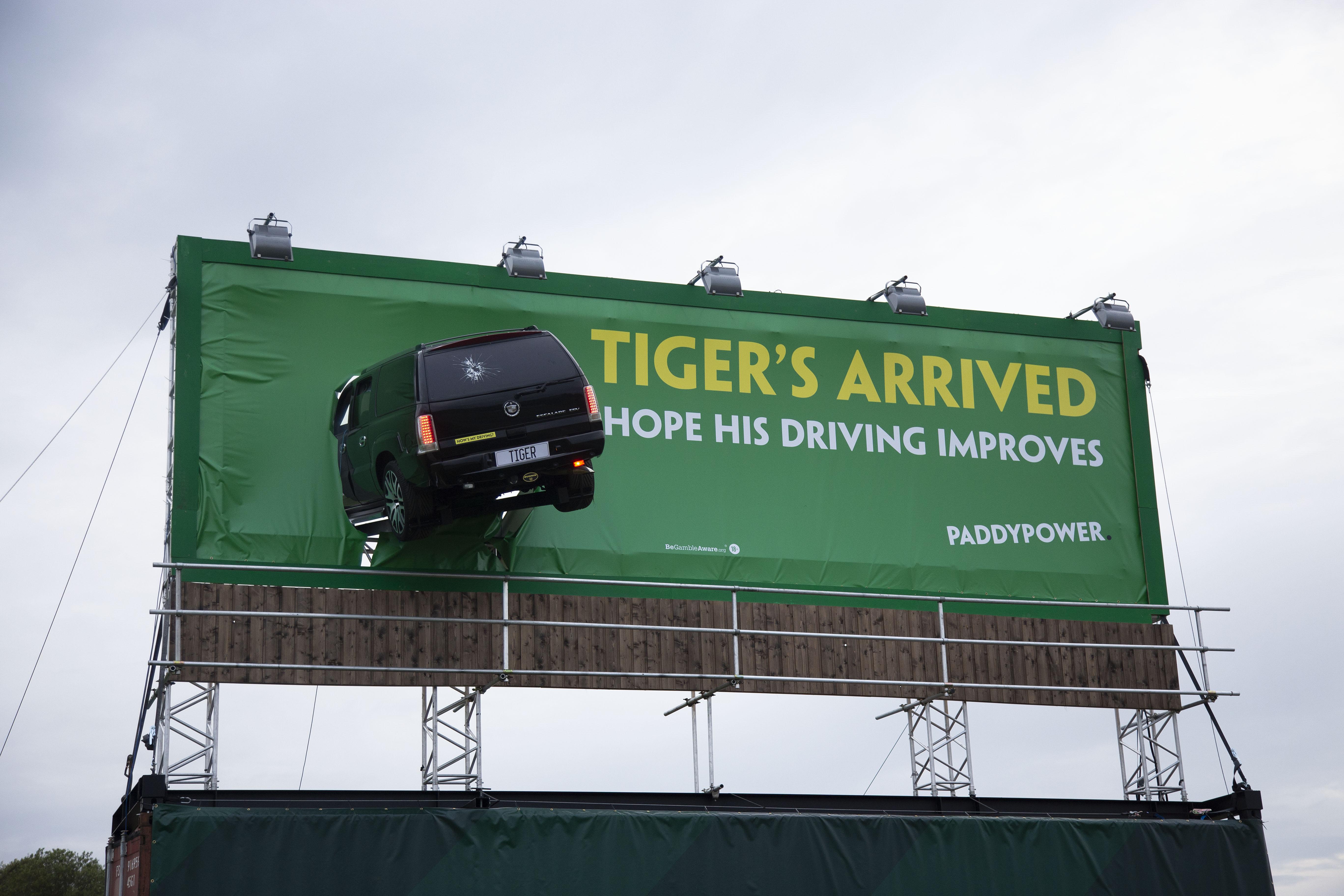 Pr Photography Tiger's Arrived